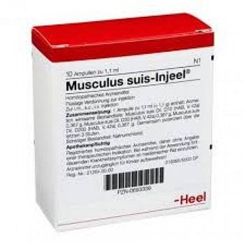 Musculus suis inj 10 fiale heel