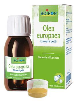 Olea europaea macerato glicerico 60 ml int
