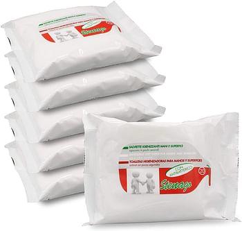 Salviettine igienizzanti mani/superfici con antibatterico 20 pezzi