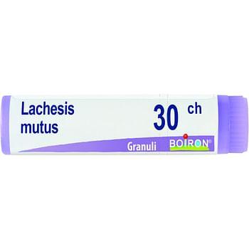 Lachesis mutus 30 ch globuli