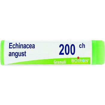 Echinacea angustifolia 200 ch globuli