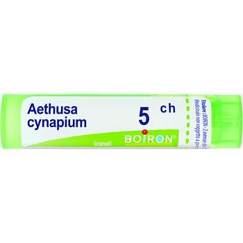 Aethusa cynapium 5ch granuli