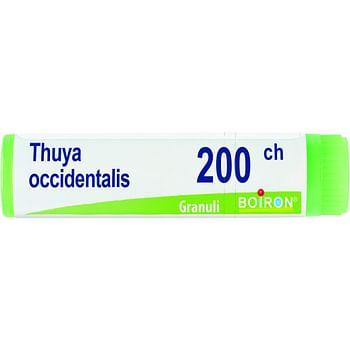 Thuya occidentalis 200 ch globuli