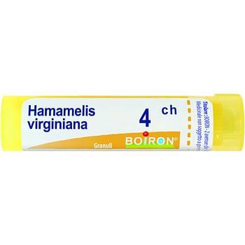 Hamamelis virginiana 4 ch granuli