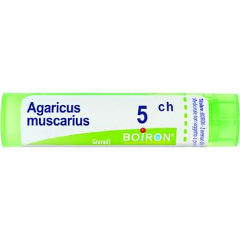 Agaricus muscarius 5ch granuli