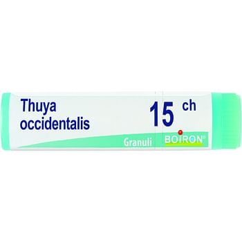 Thuya occidentalis 15 ch globuli