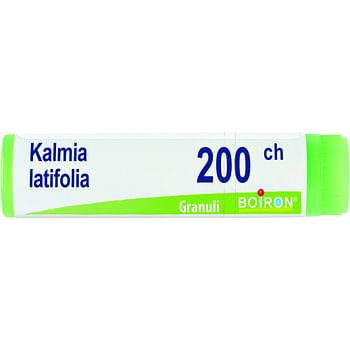 Kalmia latifolia 200ch globuli