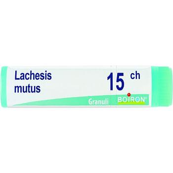 Lachesis mutus 15 ch globuli