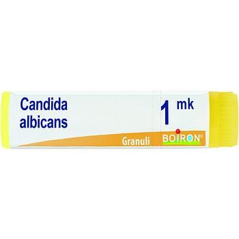 Candida albicans mk globuli