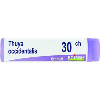 Thuya occidentalis 30 ch globuli