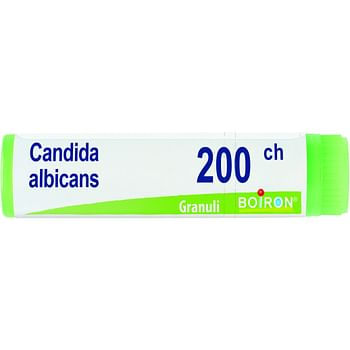 Candida albicans 200ch globuli