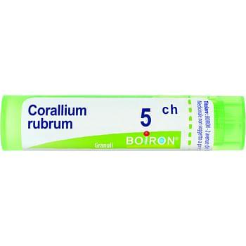 Corallium rubrum 5ch granuli