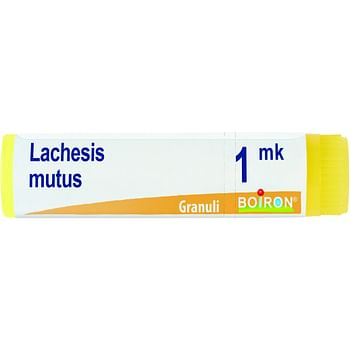 Lachesis mutus mk globuli