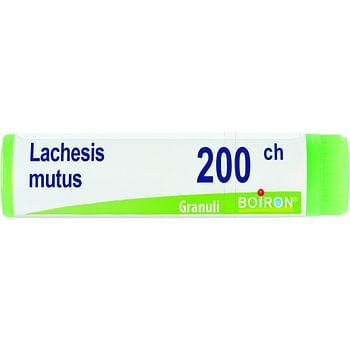 Lachesis mutus 200 ch globuli
